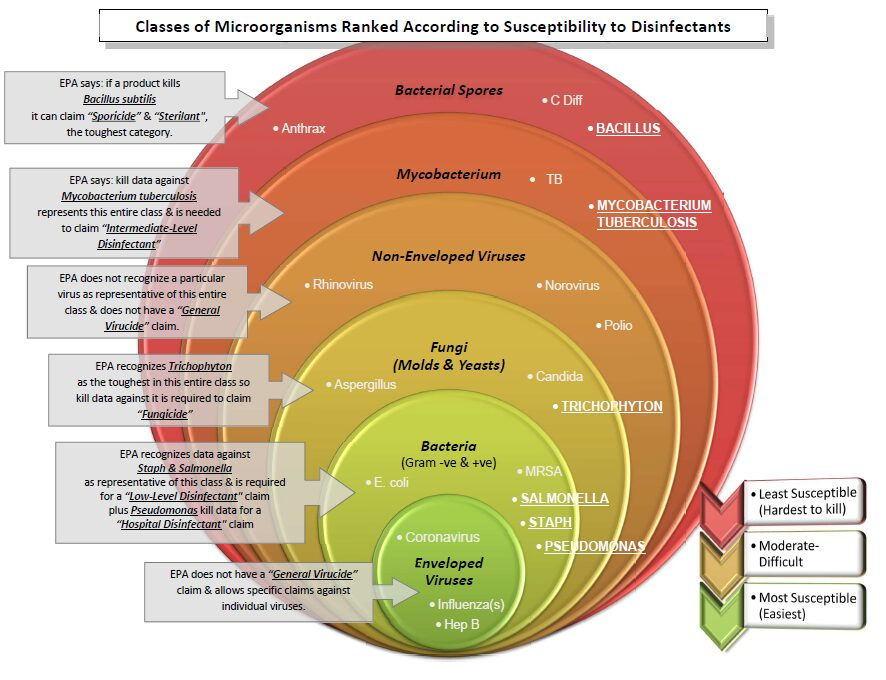 Classes of Microorganisms Ranked According to Susceptibility to Disinfectants