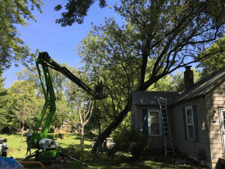 The tree is removed and a tarp will be placed. A bucket is used for tree trimming and removal.  A tarp will be in place until the roof can be repaired.