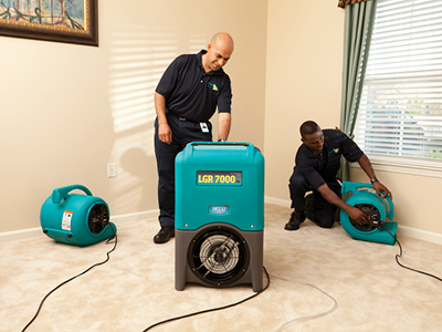 Two men cleaning a carpet