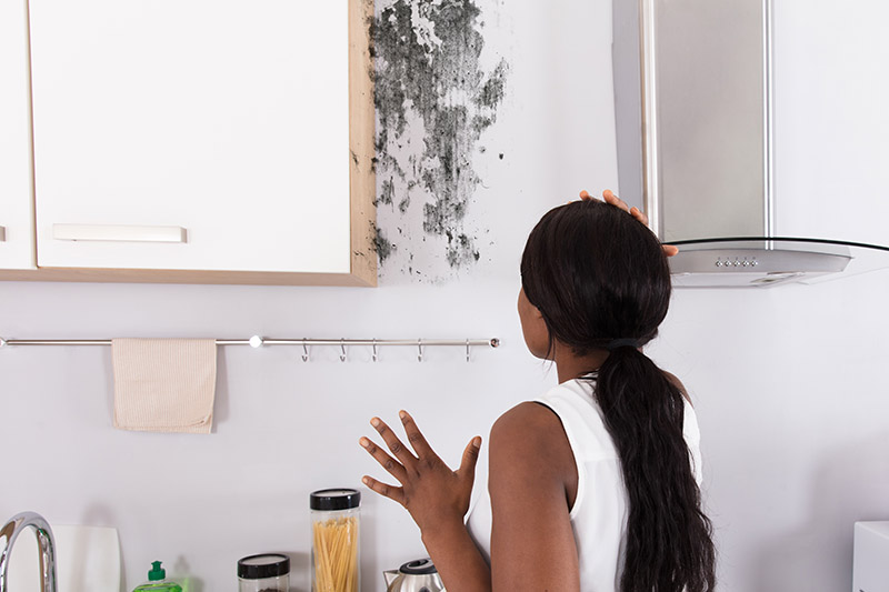 woman looking at mold on the wall