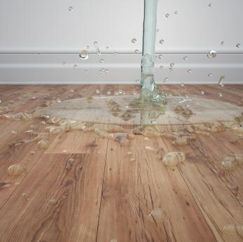 waer puddle on a wood floor