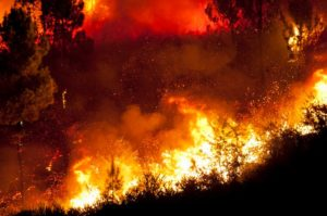 Oregon Wild Fires