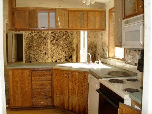 Kitchen damage in need of restoration