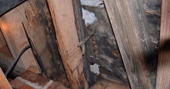 Water damaged interrior wall
