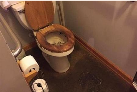 backed up toilet