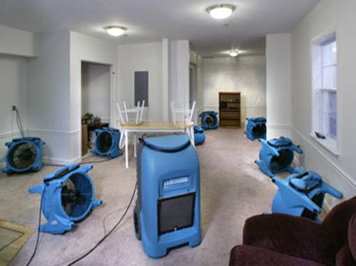 Room full of fans drying carpet.
